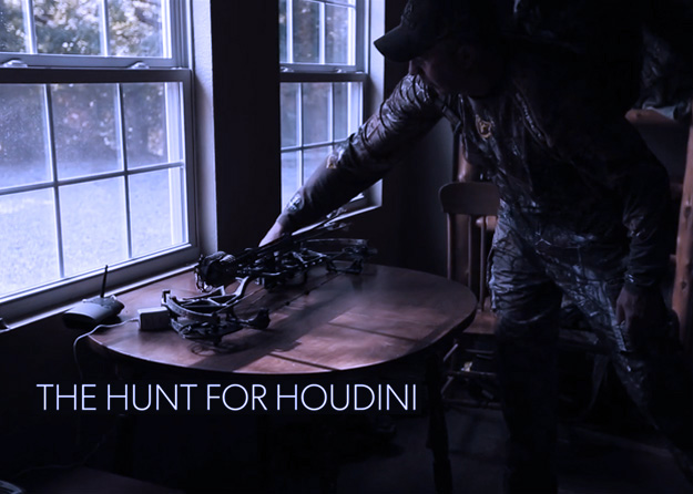 The Hunt For Houdini